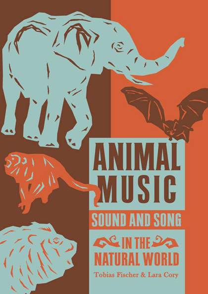 Animal Music Cover